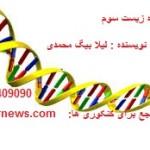 جزوه زیست سال سوم نوشته شده توسط لیلا بیگ محمدی دانشجوی داروسازی دانشگاه شهید بهشتی